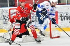 AHL MRG5: Jesenice - Cortina
