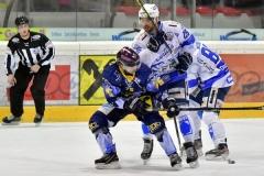 AHL G25: Die Zeller Eisbaeren-Cortina