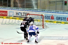AHL G5: Steel Wings Linz-Cortina