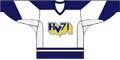 hv71 hockey