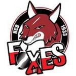 bolzano foxes