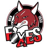 logo_bolzano_foxes_thum