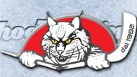 (Comun. stampa Hockey Pergine) –L'Hockey Pergine Sapiens è lieto di annunciare il ritorno in maglia biancorossa di altri due perginesi doc, due rinforzi importanti, uno per il nostro reparto offensivo […]