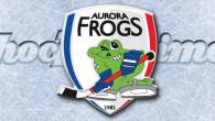 Paolo Bonazzo è ufficialmente il nuovo allenatore del ASC Auer Ora Hockey per la stagione 2016/2017. Dopo che, le vie tra Robert Chizzali e gli Aurora Frogs si sono divise […]
