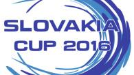 Mentre i riflettori dell'hockey internazionale sono rivolti verso le qualificazioni olimpiche, a Zilina si è giocata la Slovakia Cup, torneo amichevole in cui i padroni di casa hanno ospitato Bielorussia […]