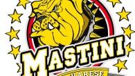 (Comunicato Stampa) – Il Varese Hockey ha un nuovo allenatore: dopo Giancarlo Merzario sulla panchina dei Mastini vedremo il bolzanino Massimo Fedrizzi. La Società giallonera ha affidato a Fedrizzi la […]