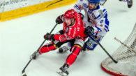 (Comun. stampa AHL) –I team della Sky Alps Hockey League sono nel pieno della costruzione dei loro roster per la stagione 2017/18. La squadra slovena dell' HDD SIJ Acroni Jesenice, […]