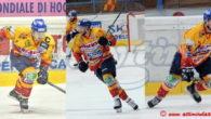 (Comun. stampa Asiago Hockey 1935) –La Migross Supermercati Asiago Hockey comunica che faranno parte del roster che prenderà parte alla prossima Alps Hockey League i giocatori Michele Stevan, Matteo Tessari […]