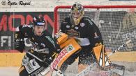 Tra mercoledì e venerdì sono in programma nove partite per la Alps Hockey League. Tra i vari match si segnala il remake dell'ultima finale tra i Lupi della Val Pusteria […]