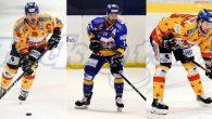 La Migross Supermercati Asiago Hockey comunica il prolungamento dei contratti con il capitano Federico Benetti e i suoi due assistenti, Matteo Tessari ed Enrico Miglioranzi. Anche nella stagione 2020/21 la […]