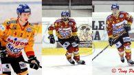 La Migross Supermercati Asiago Hockey annuncia il rinnovo contrattuale per Francesco Forte, Lorenzo Casetti e Cameron Ginnetti. Tre importanti tasselli della difesa rimarranno in Giallorosso e saranno a disposizione di […]