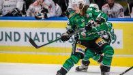 —————————————————————————————— Fassa e Bregenwerwald si sono incontrati – stasera – per la prima volta, in questa stagione di Alps Hockey League. I padroni di casa, a secco da ben quattro […]