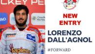 Lorenzo Dall'Agnol, anche lui dopo un anno di assenza fa gradito ritorno a Pergine. Originario della zona di Feltre, 21 anni, centro con buona visione di gioco, sicuramente aumenterà le […]