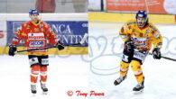 La Migross Supermercati Asiago Hockey comunica che anche per la prossima stagione gli attaccanti Marco Rosa e Daniel Mantenuto vestiranno la maglia Stellata.  Si tratta di due conferme fondamentali […]