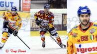 La Migross Supermercati Asiago Hockey è lieta di comunicare che gli attaccanti Matteo Tessari, Michele Stevan e Marco Magnabosco resteranno in Giallorosso anche per la prossima stagione.  Si tratta […]