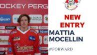 Mattia Mocellin, non ancora maggiorenne, ha debuttato con la maglia senior delle Linci già nella scorsa stagione mettendo in mostra buona visione di gioco e grande impegno sia nella fase […]